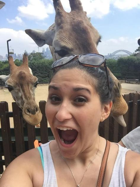 katie giraffes.jpg