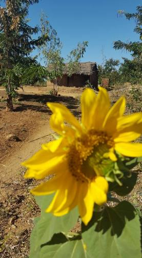Bridgette Hathaway - Rural Malawi Home.jpg